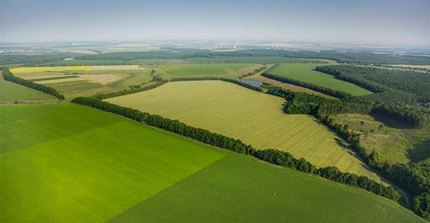Decorative aerial Photo of Agricultural Area